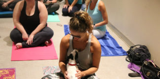 Visit atlantahumane.org for details on puppy yoga in January and February.