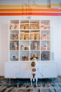 Looking to spoil your furry BFF? Wag-a-lot Upper Westside has local products galore!