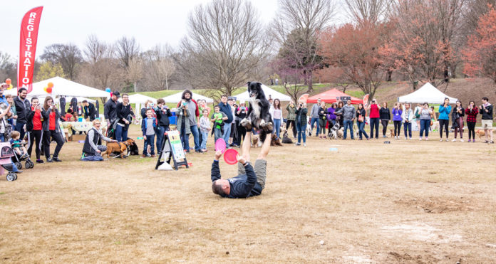 Festival focuses on dog- and familyfriendly activities, games, contests
