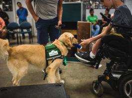 Canine Assistants Atlanta